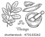 moringa plant  leaf  seed with... | Shutterstock .eps vector #473133262