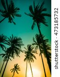 silhouette coconut palm trees... | Shutterstock . vector #473185732