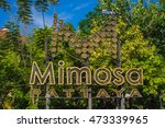 mimosa  pattaya  thailand.   21 ... | Shutterstock . vector #473339965