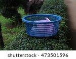basket | Shutterstock . vector #473501596