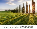 country road flanked with... | Shutterstock . vector #473834602