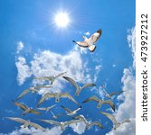 a group of flying seagull birds ... | Shutterstock . vector #473927212