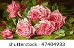 Pink Roses - 'La France Roses' - an 1894 chromolithograph of an 1893 painting by Annie Taylor Burt - stock photo