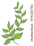 silhouette of trees leaves ... | Shutterstock .eps vector #474131752