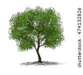 tree on white background   Shutterstock .eps vector #474132826