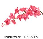orchid watercolor. | Shutterstock . vector #474272122