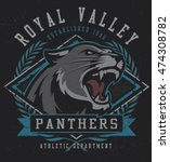 """retro """"panthers"""" athletic... 