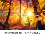colorful autumn scenery in a... | Shutterstock . vector #474495652