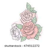 beautiful vintage roses. vector ... | Shutterstock .eps vector #474512272