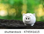 Piggy Bank On Nature Background....