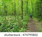 man trekking in the woods | Shutterstock . vector #474795802