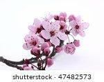 pink cherry blossom sakura on... | Shutterstock . vector #47482573