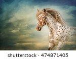 Drawing Horse Portrait Oil...