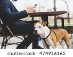 Stock photo dog with its owner at a coffee shop 474916162