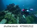 divers and coral reef... | Shutterstock . vector #475001512