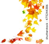 isolated autumn maple leaves... | Shutterstock . vector #475244386