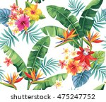 seamless pattern with palm... | Shutterstock .eps vector #475247752