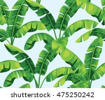 seamless tropical pattern with... | Shutterstock .eps vector #475250242
