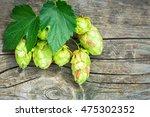 fresh green hops on a wooden... | Shutterstock . vector #475302352