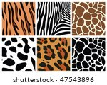 Vector Animal Skin Textures Of...