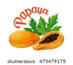 papaya. vector illustration... | Shutterstock .eps vector #475479175