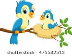 Mother Bird With Babies