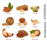 ripe nuts and seeds vector... | Shutterstock .eps vector #475559035