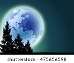 Night Background With Pine Tre...