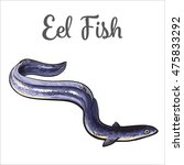 Live Eel Fish  Sketch Style...