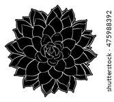 succulent clip art | Shutterstock . vector #475988392