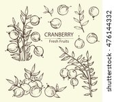 collection of cranberry . hand... | Shutterstock .eps vector #476144332