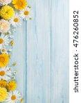 garden flowers over blue wooden ... | Shutterstock . vector #476260852