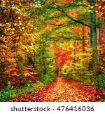 colorful autumn forest scenery... | Shutterstock . vector #476416036