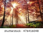rays of bursting sunlight in a... | Shutterstock . vector #476416048
