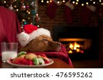 dog with plate of cookies and... | Shutterstock . vector #476595262