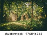 Ruins In The Forest Surrounded...