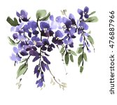 watercolor wisteria flower with ... | Shutterstock . vector #476887966
