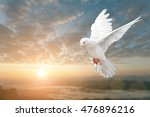 white dove on beautiful sunset... | Shutterstock . vector #476896216