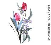watercolor tulip flower... | Shutterstock . vector #477171496