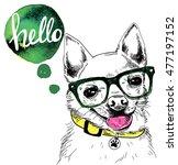 hello  cute dog wearing a... | Shutterstock .eps vector #477197152