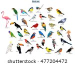 Stock vector big set birds birds flying animals bird silhouette bird vector abstract art bird logo birds 477204472