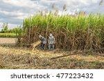 tay ninh  vietnam   nov 25 ... | Shutterstock . vector #477223432