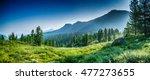 Mountain Range And Evergreen...