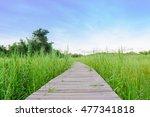 wooden bridge through the... | Shutterstock . vector #477341818