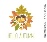 hello autumn vector... | Shutterstock .eps vector #477811486
