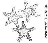 hand drawn starfish  in black... | Shutterstock .eps vector #477854686