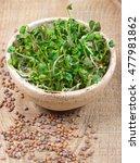 concept of healthy diet.... | Shutterstock . vector #477981862