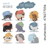 cat breeds icon set flat style. ... | Shutterstock .eps vector #478277056