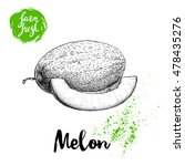 hand drawn sketch style melon... | Shutterstock .eps vector #478435276