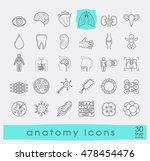 icons presenting various organs ...   Shutterstock .eps vector #478454476
